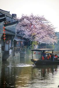 西塘古镇清晨流水小船桃花