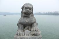 颐和园石狮