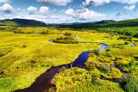 草甸弯曲的河流 (航拍)