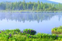 晨雾迷漫的森林湖