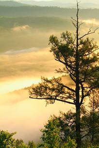 林海山谷朝阳云海