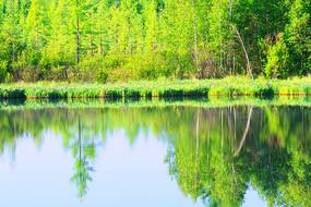 林海中的湖泊