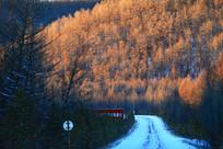 冰雪公路风景