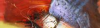 抽象油画高清图片素材