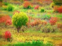 电脑画《彩色丛林》