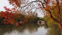 瘦西湖小桥图片
