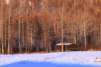 树林木屋雪景