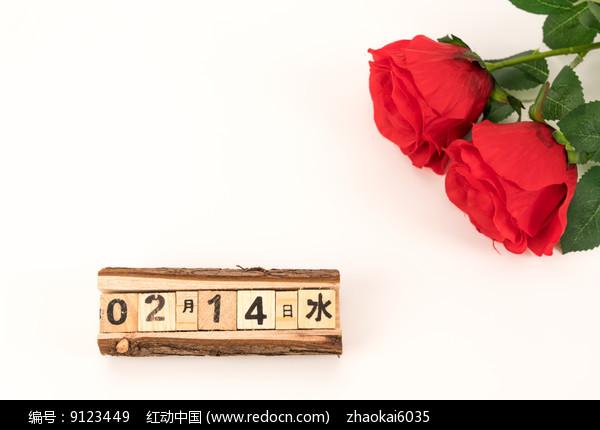 节日玫瑰图片