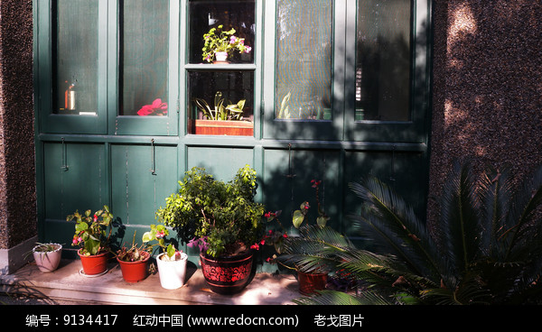 别墅户外绿化图片