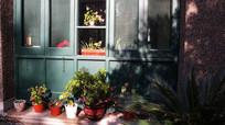 别墅户外绿化