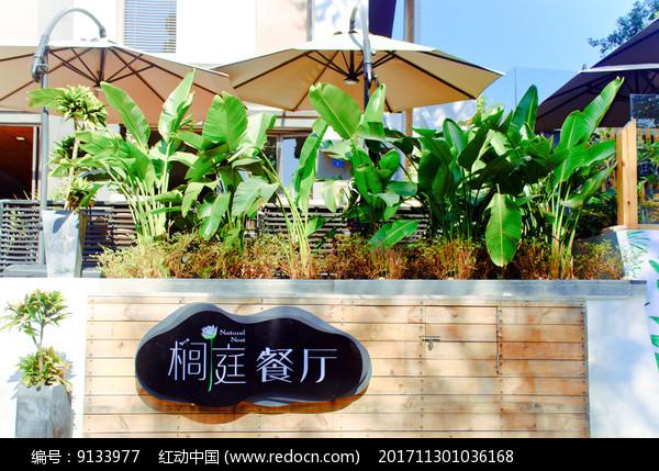 大鹏所城榈庭餐厅图片