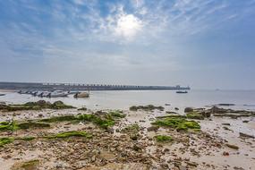 广西冠头岭的海蚀石