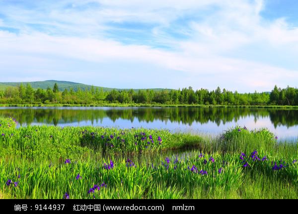大兴安岭马兰湖 图片