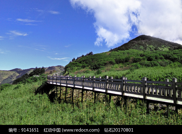 绿色的山岭和观景道路图片