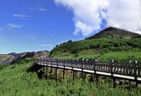 绿色的山岭和观景道路