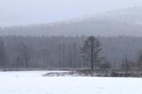 林海雪原山林