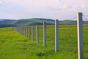 绿色原野上的铁丝网
