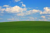 绿色原野田园风光