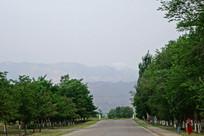 西夏王陵遗址园区景观