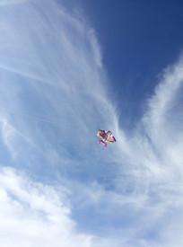 草原上放风筝