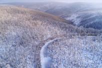大兴安岭林海雪原 航拍