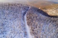 通向林海雪原的山路(航拍)