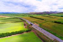 穿越农田的公路