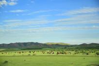 蓝天白云牛羊成群的草原美景