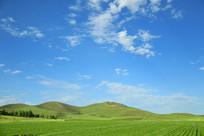 蓝天下翠绿的草原美景