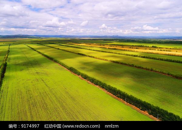 田野景观 (航拍)  图片