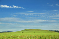 乌兰布统草原的美景