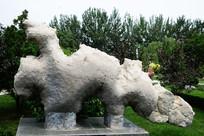 小龙石-白云质灰岩