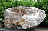 制水泥矿石-灰岩标本