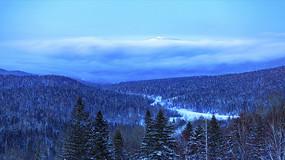 冬季的东北原始森林