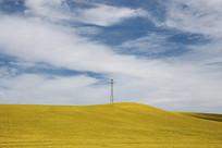 蓝天下的草原草场