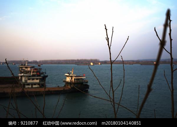 树枝后的小镇江边码头图片