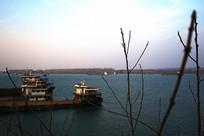 树枝后的小镇江边码头