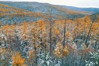 雪降秋季山林(航拍)