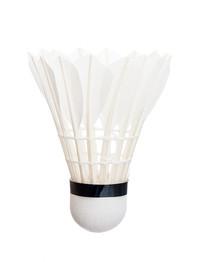 一只白色羽毛球白底图片