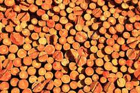 大兴安岭林区贮木场-木材垛