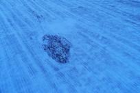 蓝色的田野雪景 (航拍)