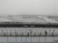 新疆被雪覆盖的戈壁滩