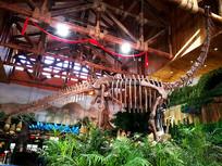 恐龙骨架造型