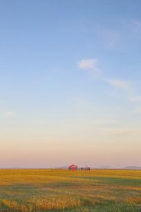 洒满金色阳光的草原