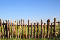 草原木栅栏
