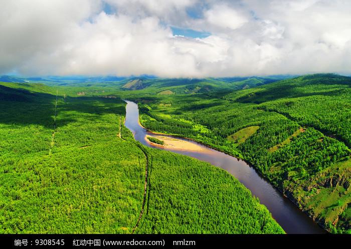 穿越绿色林海的河流 (航拍) 图片