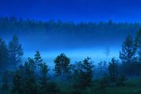 大兴安岭蓝夜 森林之雾