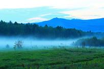 大兴安岭森林 夜雾缥缈