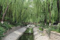 公园内小河