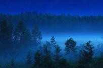 梦幻森林 夜雾迷蒙